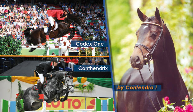 Contendro I, Codex One, Conthendrix @ PSV Morel