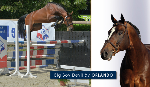 Big Boy Devil by ORLANDO