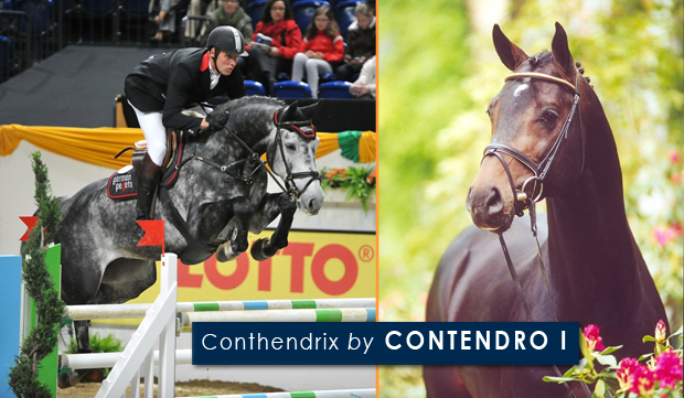 Conthendrix by CONTENDRO I