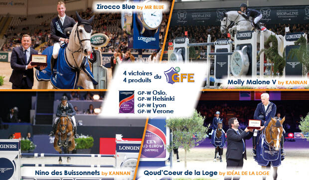 Qoud'Coeur, Nino, Zirocco, Molly Malone V @ Pierre Costabadie FEI, Dirk Caremans FEI, Roger Svalsroed FEI, Stefano Secchi FEI