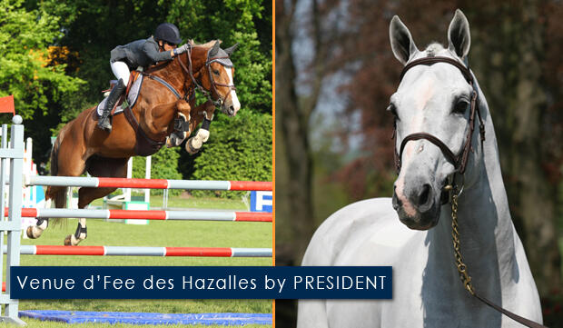 Venue d'Fee des Hazalles by PRESIDENT